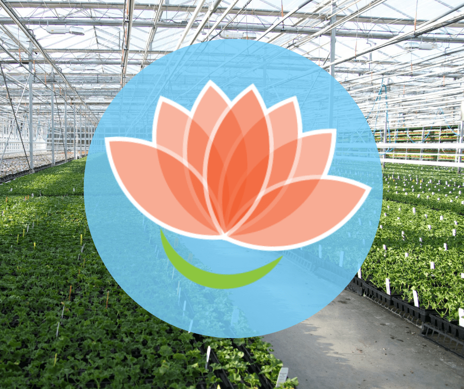 Growing Smiles logo with blue circle around it placed in front of a greenhouse shot