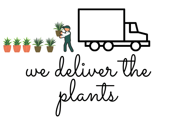 "A picture of four potted green plants behind a a delivery truck with the words ""We deliver the plants"" in black cursive lettering."